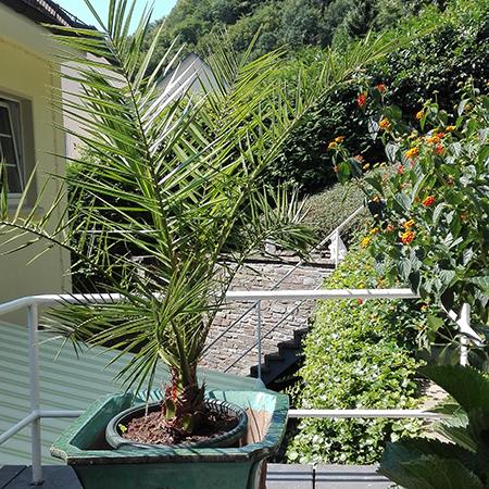 q_terrasse_122741